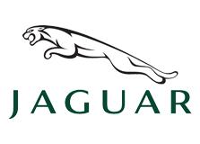 Code couleur pour Jaguar